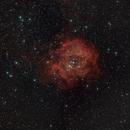 Rosetten-Nebel,                                BergAstro