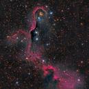 Elephant Trunk Nebula in IC1396,                                Jeff Weiss