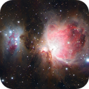 M42 Orion,                                Erik