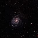 M101,                                Jenke ter Horst