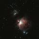 Orion and Running Man Nebula,                                thomasleehunt