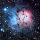 M20 Trifid Nebula,                                Anne-Maree McComb