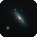Flocculent NGC2841 - RGB,                                Rich Sky