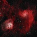 Flaming Star Nebula (and friends),                                Spencer Hochstetler