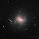 NGC 4214, a LRGB picture,                                Niels V. Christensen