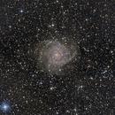 IC 342,                                Virginie