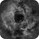 Rosette Nebula, Ha [a quick grab during galaxy season],                                Stephen Garretson