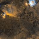 Orion Dust,                                Zhuoqun Wu