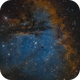 NGC 281 In modified HST,                                Mike Miller