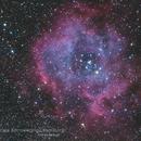 Rosette Nebula (Caldwell 49) ,                                alpheratzlaboratory