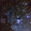 NGC7129,                                Tim Morrill