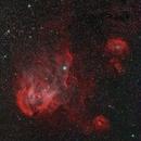 Running Chicken Nebula,                                Steffen Boelaars
