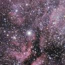 Cygnus, around Sadir,                                David Redwine