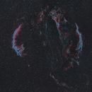 Veil Nebula,                                Sasho Panov