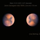 """Mars 12.01.2021,   9,3"""" dia,                                Uwe Meiling"""