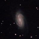 NGC 2903,                                David Redwine