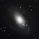 M81 Bode's galaxy,                                  Darktytanus