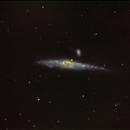 NGC4631,                                Giuseppe Petralia