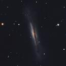 Hamburger Galaxy,                                Brian Meyerberg
