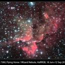 NGC 7380, Flying Horse / Wizard Nebula, HαRRGB, 18 Jun + 12 Sep 2014,                                David Dearden