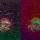 The Rosette Nebula (NGC 2237-9/46) CFHT and Hubble palette,                                Seiji Matsuda