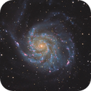 M101 with C11@ 1730 focal lenght,                                cv14