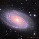M81,                                Astrowood
