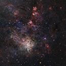 Tarantula Nebula NGC 2070,                                Pelayoaviles