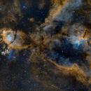 Melotte15 & IC1795,                                Matthias Steiner