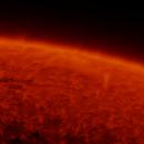 Sun - Ha - 14:00UT - 10 April 2020,                                Roberto Botero