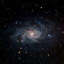 M33 Triangulum Galaxy,                                Perry Muir