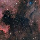 NGC 7000,                                zoyah