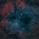 Elephant's Trunk Nebula (IC1396) HOORVB,                                Ysty