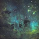 Tadpoles Nebula,                                Trevor Jones