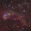 Gecko Nebula (LBN 437),                                Nikita Misiura