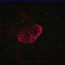 Cresent Nebula bicolor,                                rkayakr