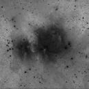 M42 Faint nebulosity boost,                                Kees Scherer