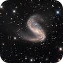 NGC 2442 The Meathook Galaxy,                                Terry Robison