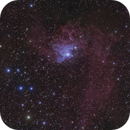 Flaming Star Nebula IC 405,                                Anthony Quintile