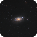 M63 The Sunflower Galaxy - collaboration with Gnomus,                                Barry Wilson