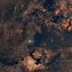 constellation du cygne au 135mm samyang,                                laup1234