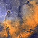 Elephant Trunk Nebula,                                Frank Turina