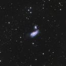 NGC 4490,                                Jens Zippel