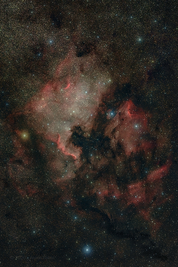 NGC7000 and IC5070 - widefield - guided,                                Almos Balasi