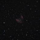 Abell 21 Medusa Nebula RGB + Ha + OIII,                                Stan Westmoreland