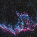 NGC 6992 - A Sliver of the Eastern Veil Nebula,                                Dhaval Brahmbhatt
