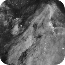 Pelican Nebula,                                Roland Christen