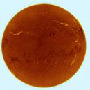 Ha sun inverted,                                Brian Ritchie