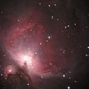 M42 Orion Nebula,                                George Weaver