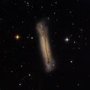 NGC 3628,                                Cedric Raguenaud